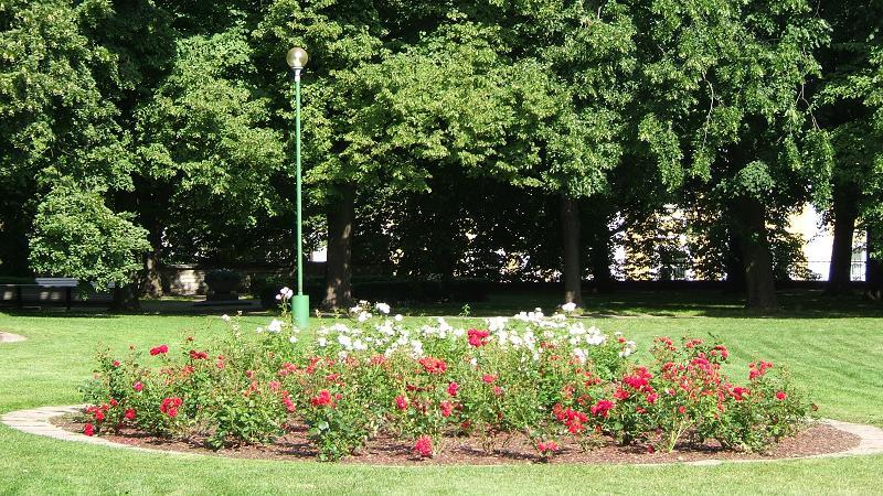 国会議事堂横の庭園