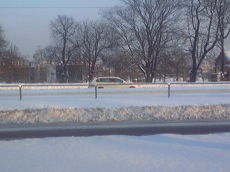 タリン、記録的な積雪 2010年1月